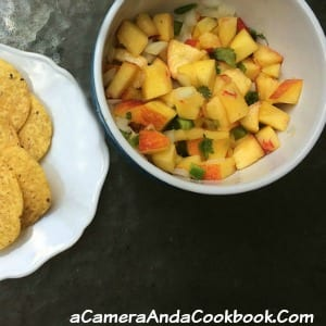Peach Salsa - Looking for a use for all the extra peaches you have left? This Peach Salsa is a great remedy for that issue. You will buy more peaches just so you can make more of this yummy twist on salsa.