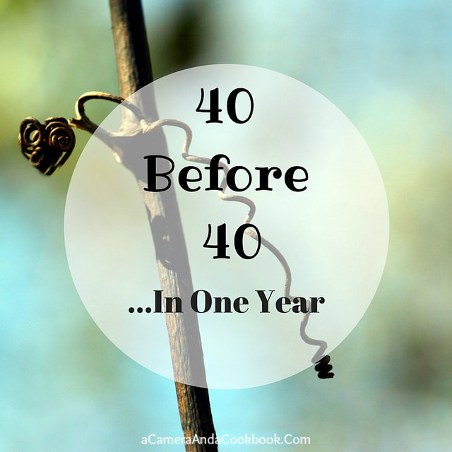 40 by 40 {a list} - do you have a list of goals you're working towards?