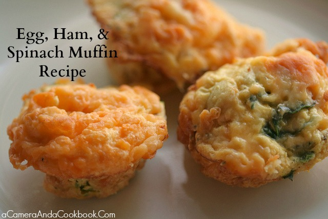 Egg, Ham, & Spinach Muffins - make ahead and pop a couple in the microwave for an on the go breakfast!