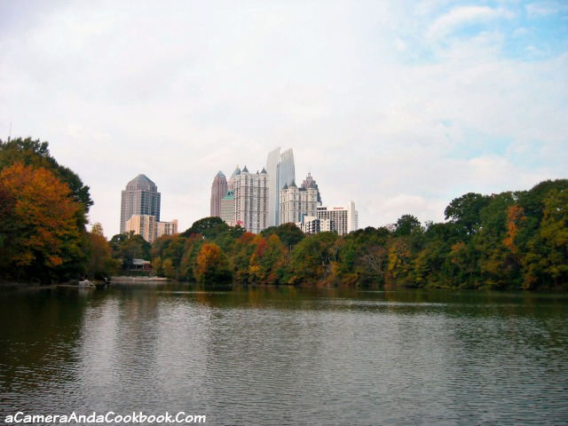 Midtown Skyline from Piedmont Park Atlanta, GA