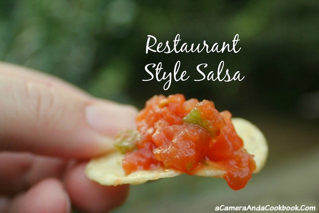 Restaurant Style Salsa - If you're like me and you are constantly craving good salsa, but don't want to spend money on a meal to get the free chips and salsa, why not just make it at home?  This salsa is so easy and will satisfy that craving.