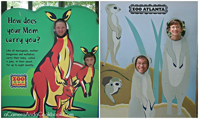 Zoo_Atlanta_Family