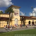 Spring Training - Read about our experience going on a Spring Training baseball trip in Florida.