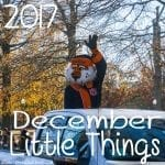 December Little Things 2017
