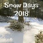 Snow Days 2018