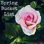 Spring Bucket List 2018