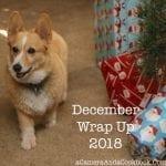 December Wrap Up 2018