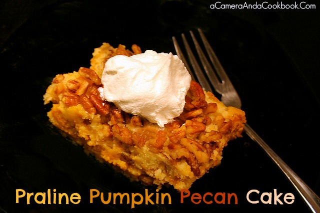 Looking for something different for your Thanksgiving dessert?  This Praline Pumpkin Pecan Cake is a great alternative to the normal pumpkin pie or pecan pie.