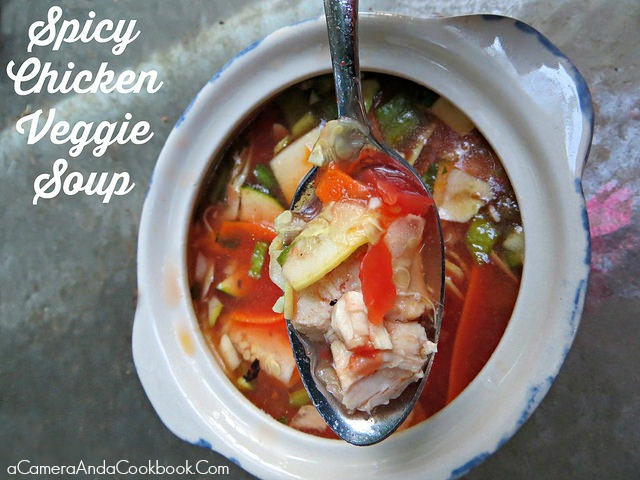 Spicy Chicken Veggie Soup {Crockpot}