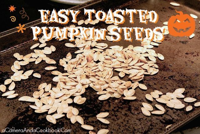 Toasted Pumpkin Seeds - Halloween is when pumpkin patches are visited, jack-o-lanterns are carved, and pumpkin seeds are toasted.  Check out this easy toasted pumpkin seeds recipe!