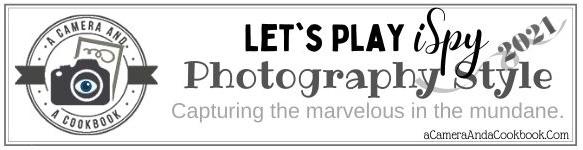 iSpy Photo Challenge 2021