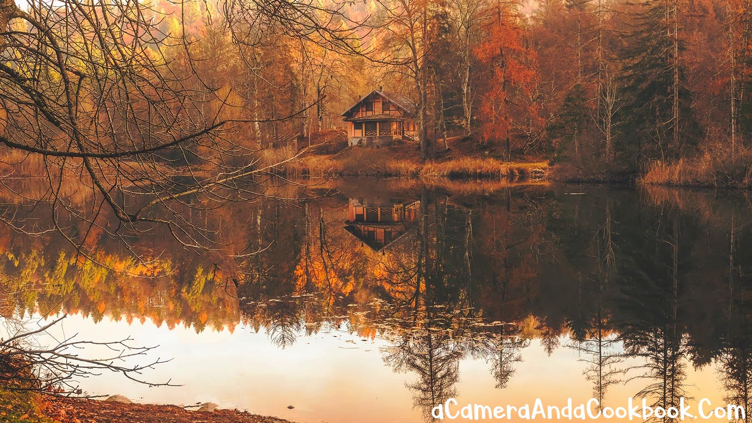 7 Benefits of Staying in a Cabin on Vacation