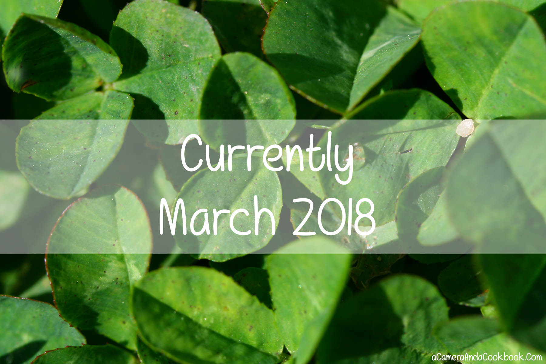 Currently | March 2018