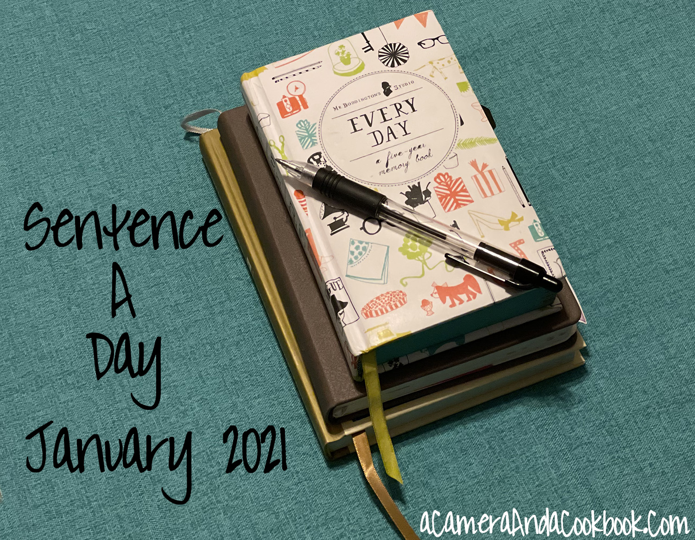 Sentence a Day - January 2021