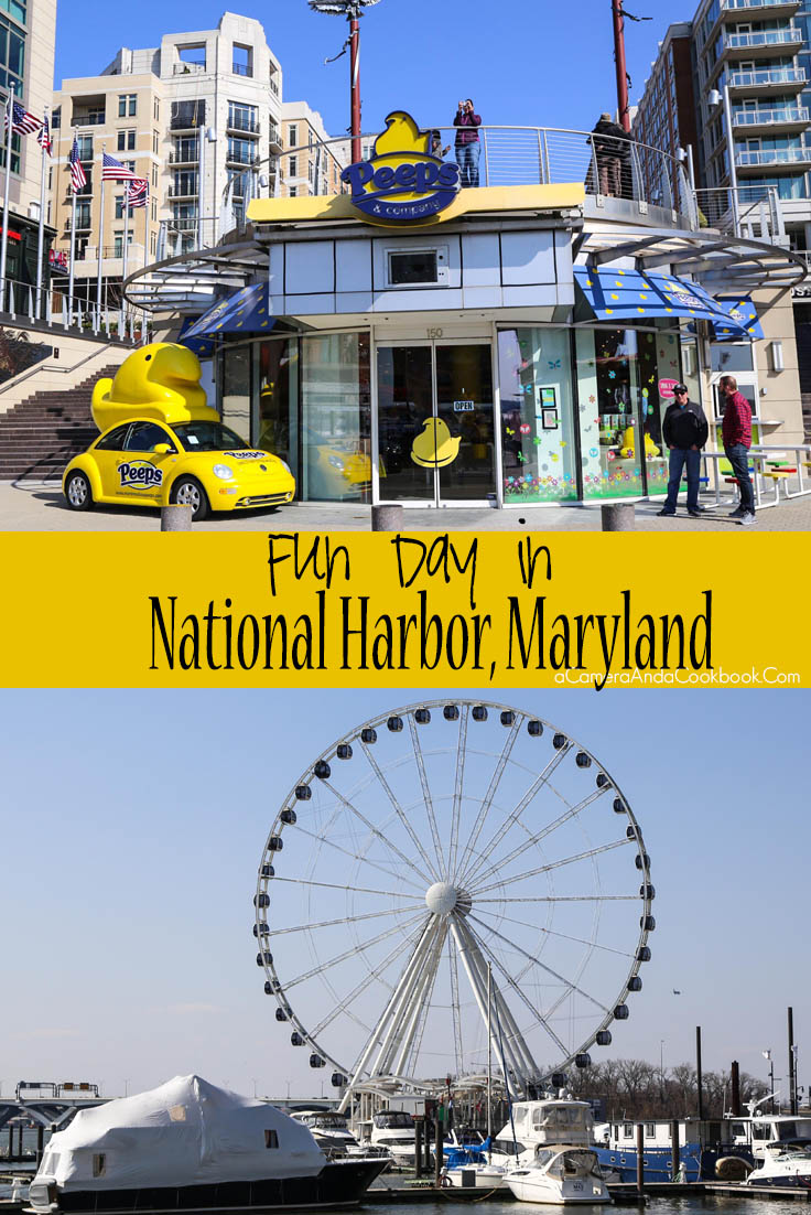 Fun Day in National Harbor, MD