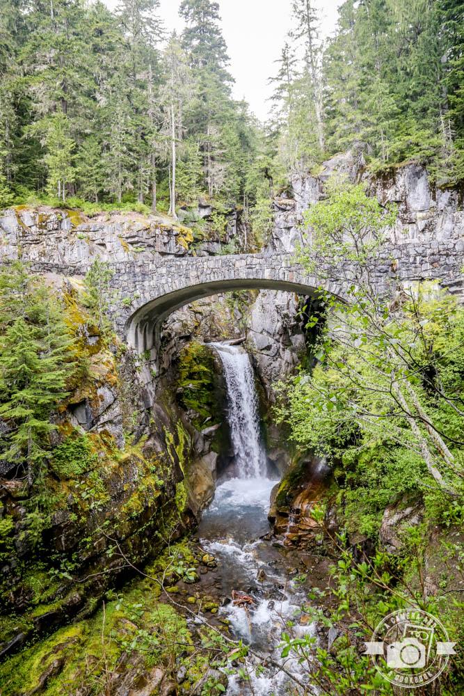 Pacific Northwest Trip: University of Washington Tour & Mount Rainier National Park