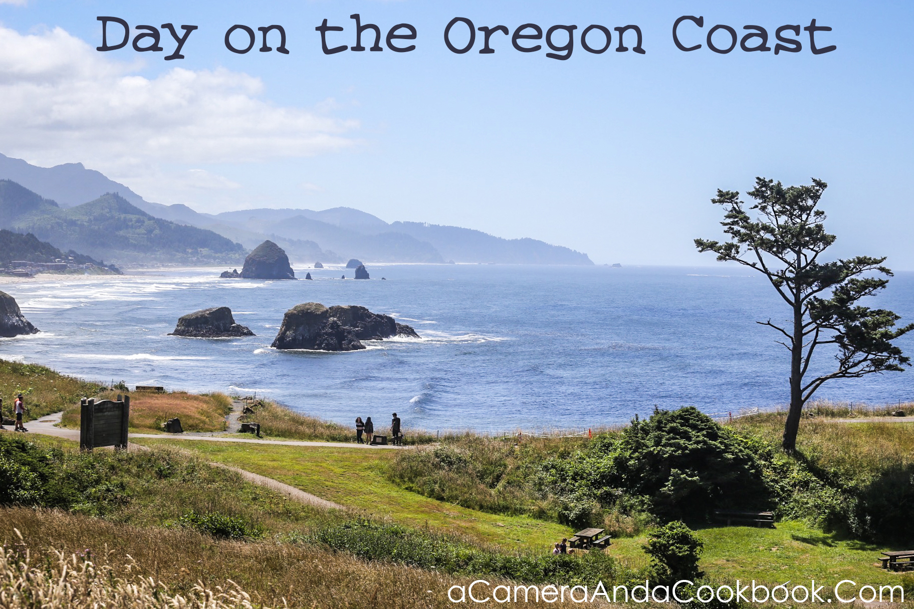 West Coast Trip:Day 10 Oregon Coast