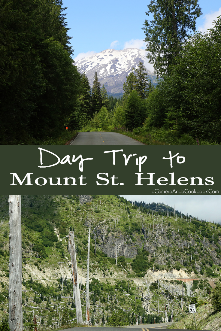 Day Trip to Mount St. Helens