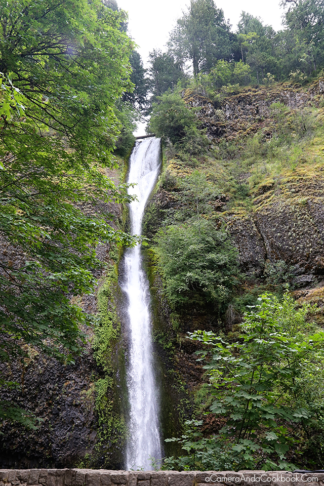 Falls seen from the road in the Columbia River Gorge