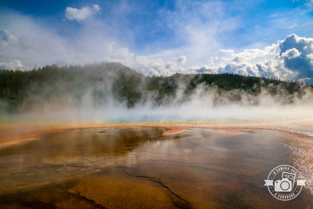 Mountain West Trip:Day in Yellowstone