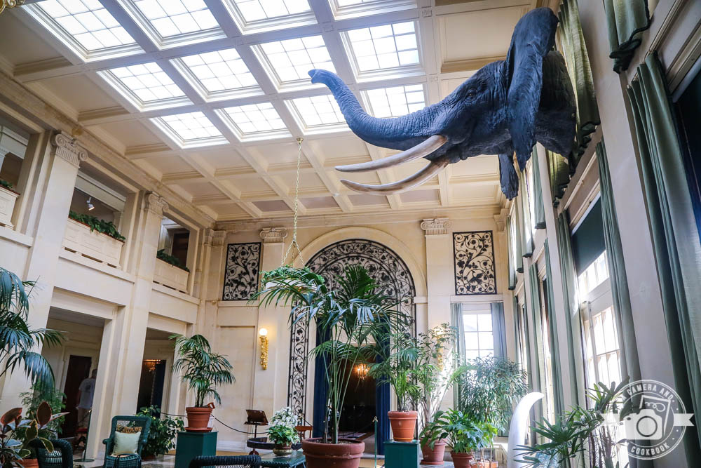 Visit to the Eastman Museum [Rochester, NY]
