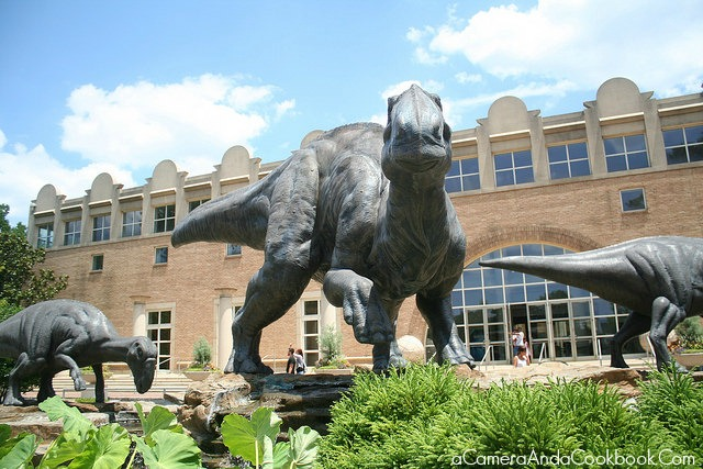 Fernbank Museum of Natural History - Atlanta, GA