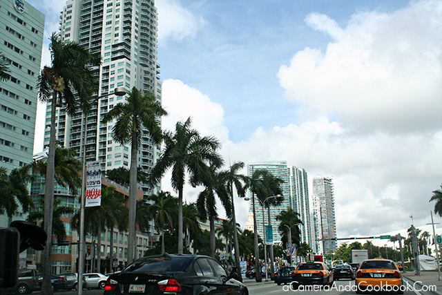 Afternoon in South Beach