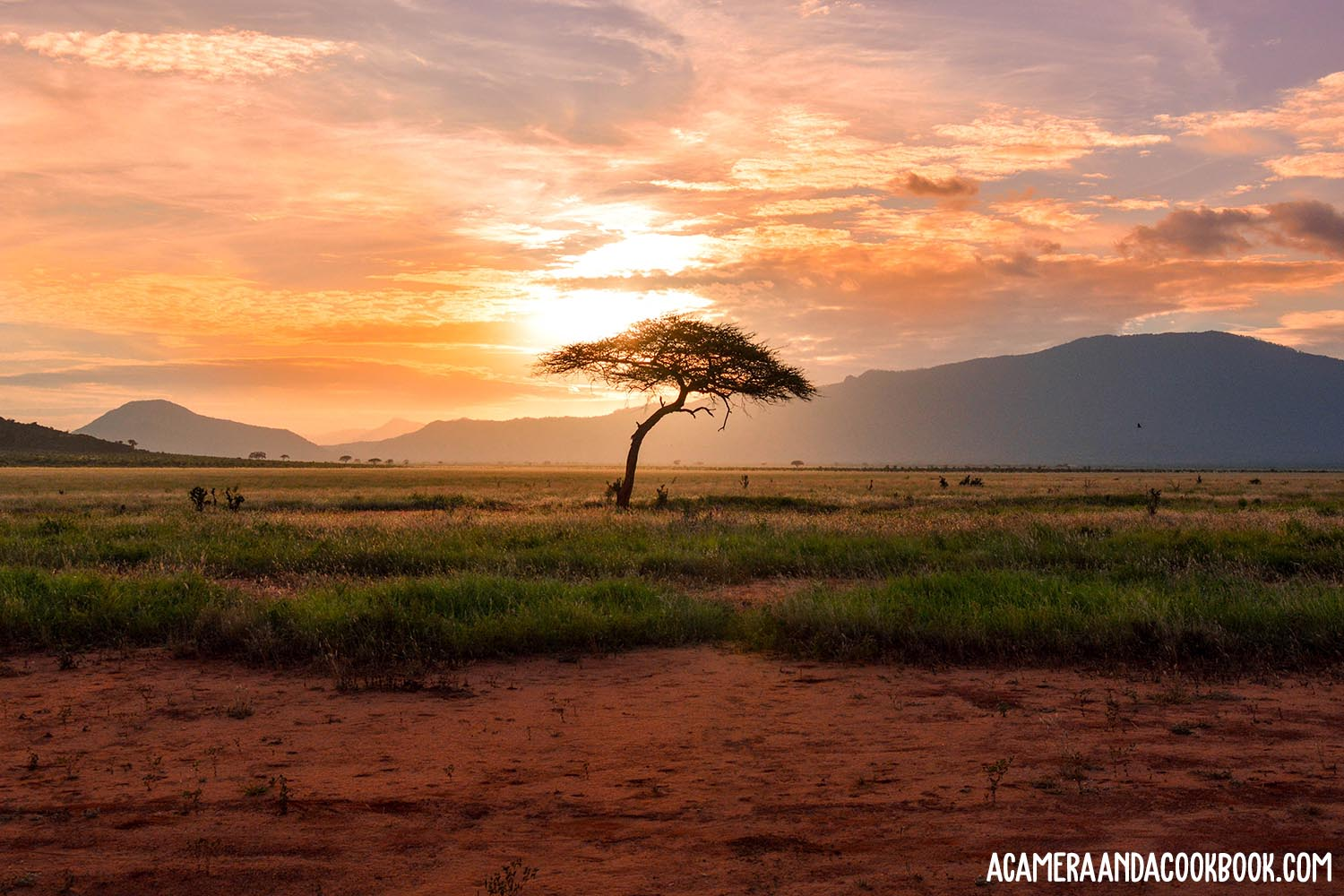 Tranquility, Culture, and  Adventure in Africa