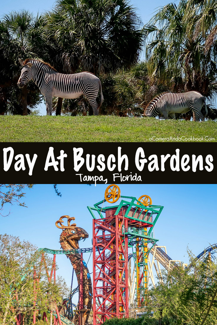 Busch Gardens - Tampa, FL