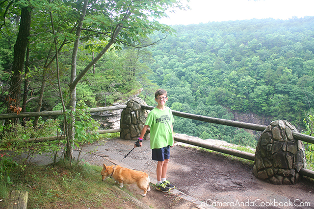 Hike at Cloudland Canyon State Park