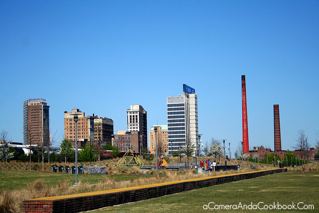 View from Railroad Park in Birmingham
