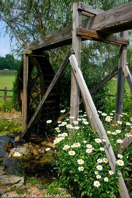 4th of July trip to Murphy, NC - Pretty scene near the Riverwalk area