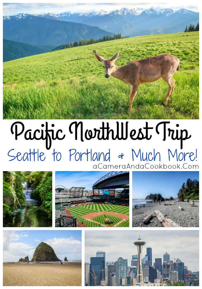Pacific NorthWest Trip Page - This is the landing page for our Pacific Northwest Trip, where we traveled the Washington Coast, Seattle, Part of the Oregon Coast, Cannon Beach, Ecola State Park, Portland, and more!