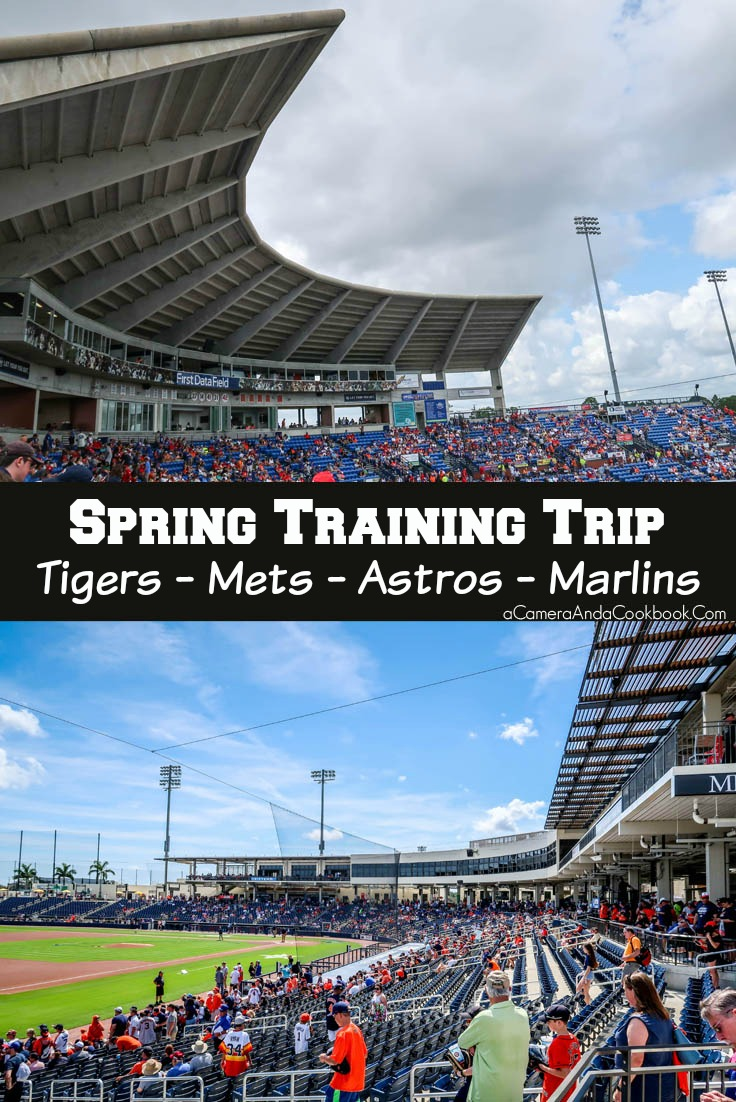 Spring Training 2019