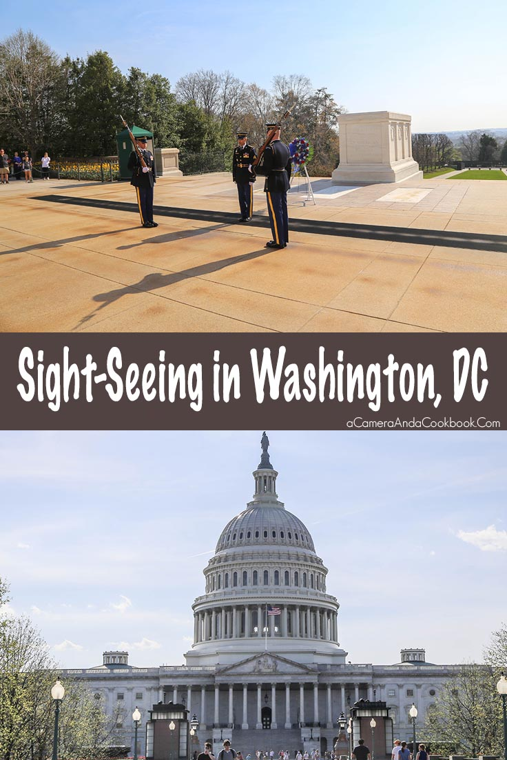Site-seeing in Washington D.C. Day 1