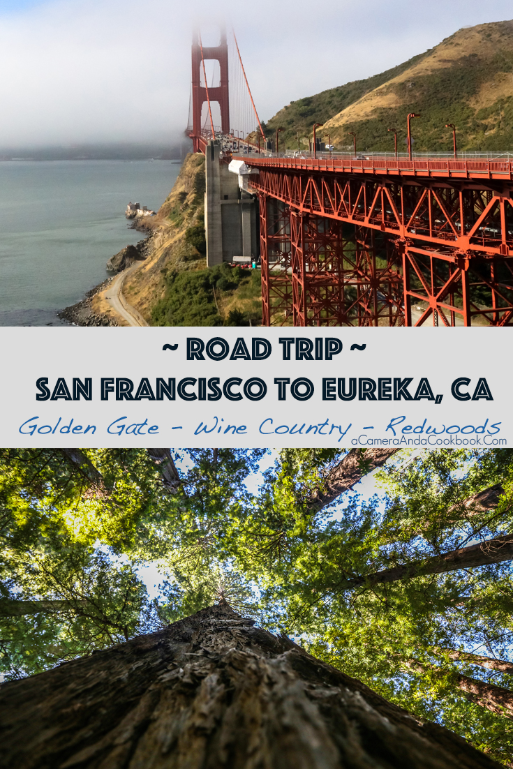 West Coast Trip Day 5 - San Francisco to Eureka, CA - Golden Gate Bridge - Wine Country - Redwoods
